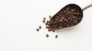 koffie bonen kiezen